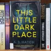 this-little-dark-place